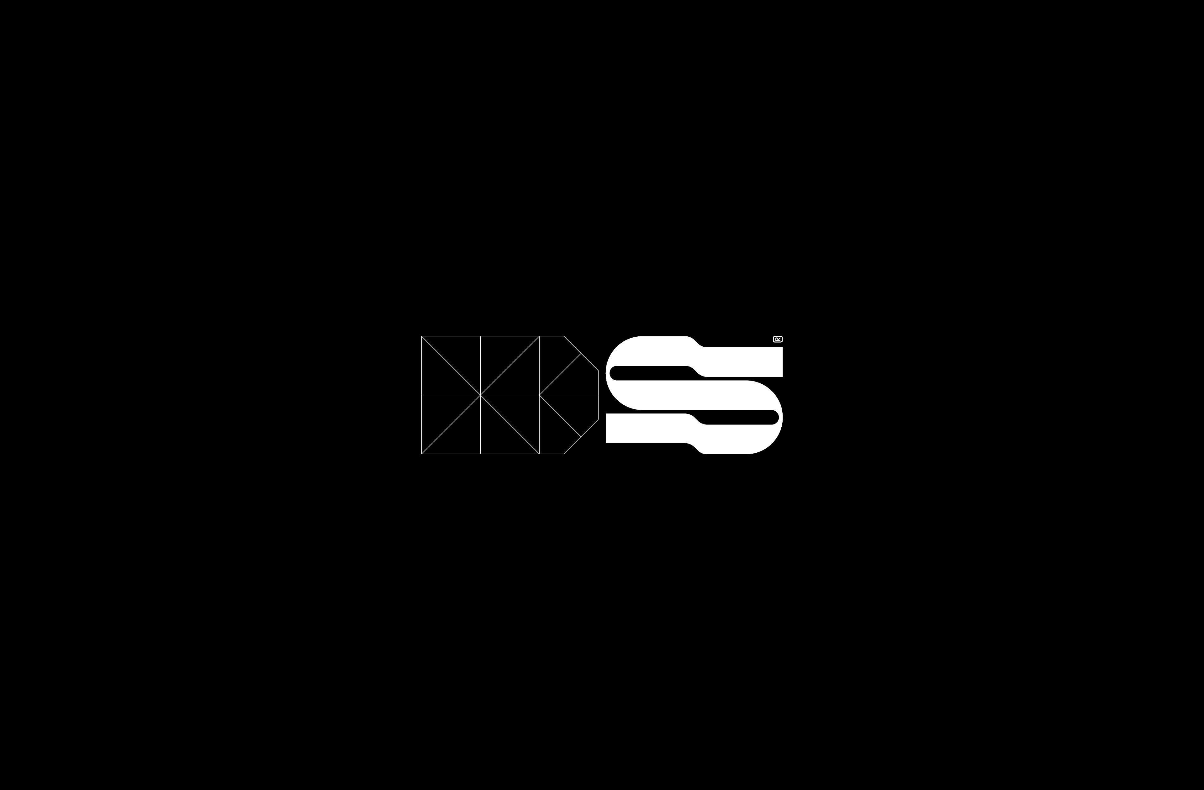 Logo-DS-2x