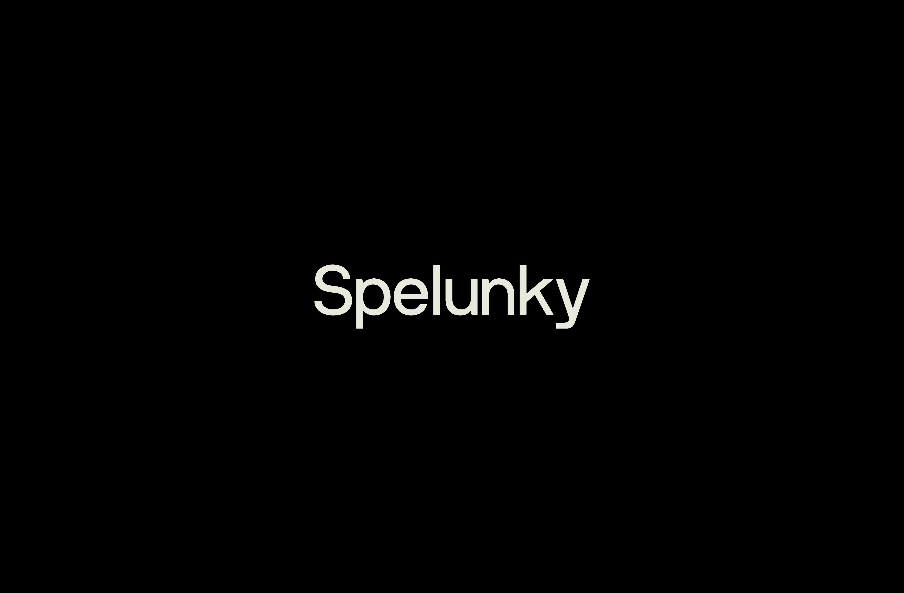 Spelunky-type-2x